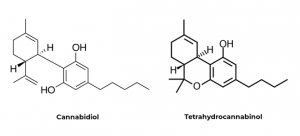 Ilustrační CBD-THC