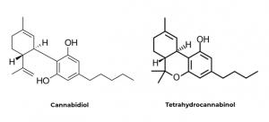 Ilustration-CBD-THC